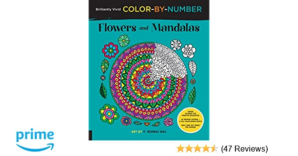 Brilliantly Vivid Color By Number Flowers And Mandalas Guided