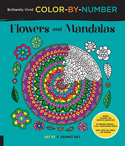 Flower Medium Punch (Brilliantly Vivid Color-by-Number: Flowers and Mandalas: Guided coloring for creative relaxation--30 original designs + 4 full-color bonus prints--Easy tear-out pages for framing)