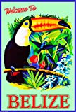 Belize Central America Caribbean Sea Beach Ocean Travel Advertisement Poster