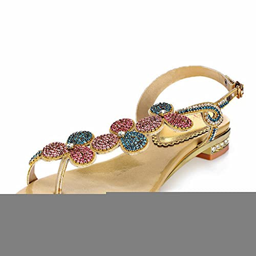 1efdd615213898 Doris Fashion Women Glitter Rhinestone Flip-Flop Sandals Shoes Flats Casual  Slippers Gold 5 B