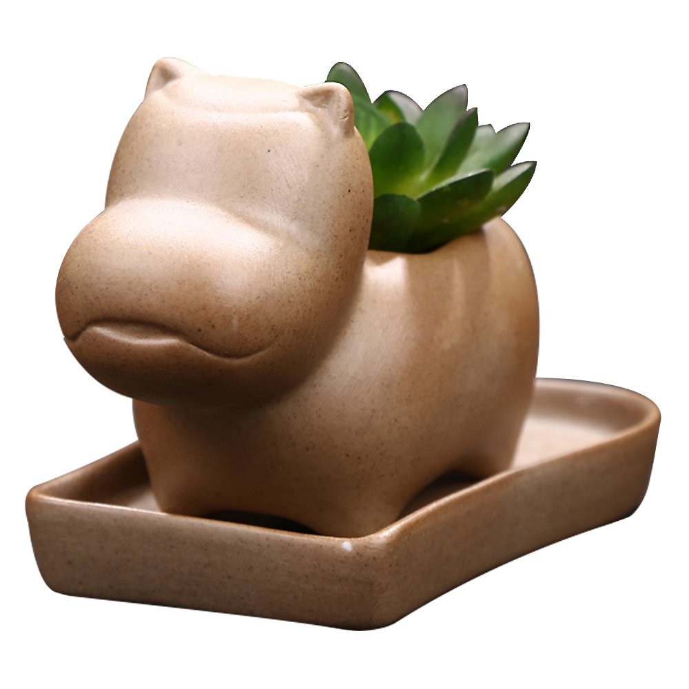 GeLive Decorative Ceramic Plant Flower Pot Succulent Planter with Tray Saucer Pottery Hippo
