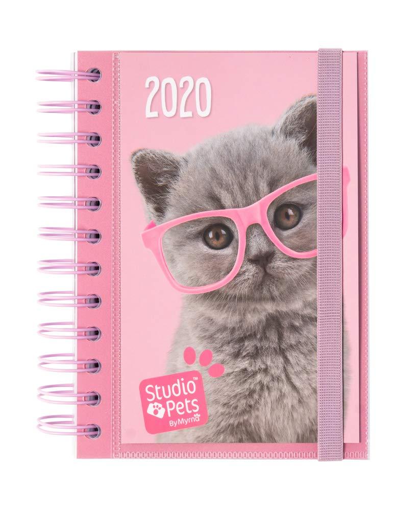 Amazon.com : Erik Studio Pets Cat 2020 Daily Diary January ...