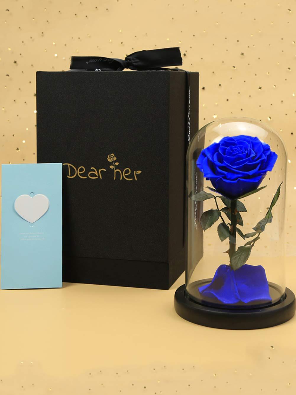 Dear her Beauty and The Beast Rose、手作り保存花、ガラスギフトボックス入りプリザーブドフラワー、家族パーティー、結婚式、バレンタイン、彼女への最高の贈り物 ブルー B07LFFMFBB ブルー