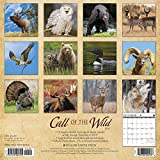 Call of the Wild 2020 Wall Calendar