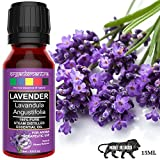 Organix Mantra Lavender Essential Oil, 100% Steam Distilled Natural, Pure and Organic (15ML)