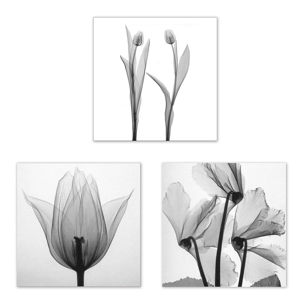JAGENIE 3 unids Arte de la Flor Pintura Al Óleo Impresión de la Lona Cuadros para Home Room Decor Unframe 20x20CM