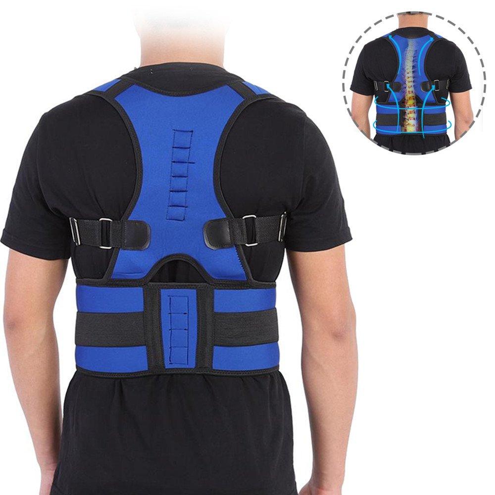 danlote Lower Back腰椎サポートバックブレースself-heating磁気セラピーベルト – Bestデュアル調節可能なストラップと通気性メッシュパネルfor Back Pain Relief B075561L8Q Medium|ベージュ ベージュ Medium