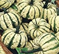 "A 2g (Approx. 25) Exotic Squash Seeds ""Sweet Dumpling"" Rare One of Sweetest Squash At All, Bot.: ""Cucurbita Pepo"" 'Fresh Seeds - Best Before 07.2018!'"