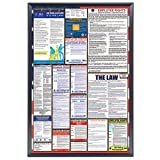 39 frame - SnapeZo Poster Frame 27x39 Inches, Black 1.25
