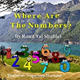 Where are the numbers ?: The adventure of the numbers