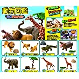 Earth whole! Animal Book Welcome! Kirin separately Candy to Wild Africa Re-Ment
