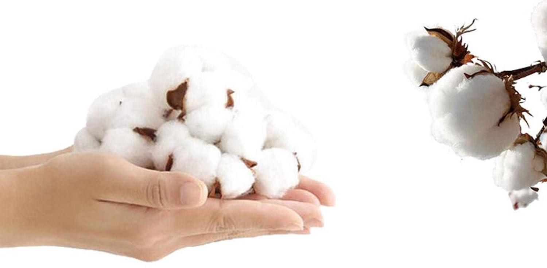 PFSYR Outdoor-Multi-Pocket-Weste, verdicken verdicken verdicken Warm Down Cotton Weste, stilvoll und praktisch Eigenschaft Dieser Weste (Farbe   Grün, größe   XL) B07HH3GKS2 Jungen Billig 11e748
