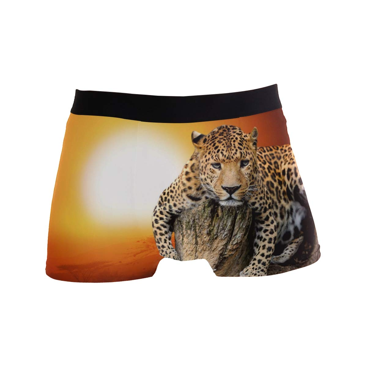 Mens Boxer Briefs Underpants Leopard Pattern Underwear for Men Adult