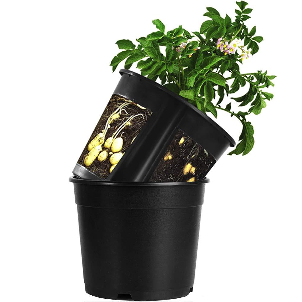 Garden Planter Pot 2-Piece Plastic Container for Growing Vegetables: Tomato,Potato,Carrot,Onion,Peanut (Black)