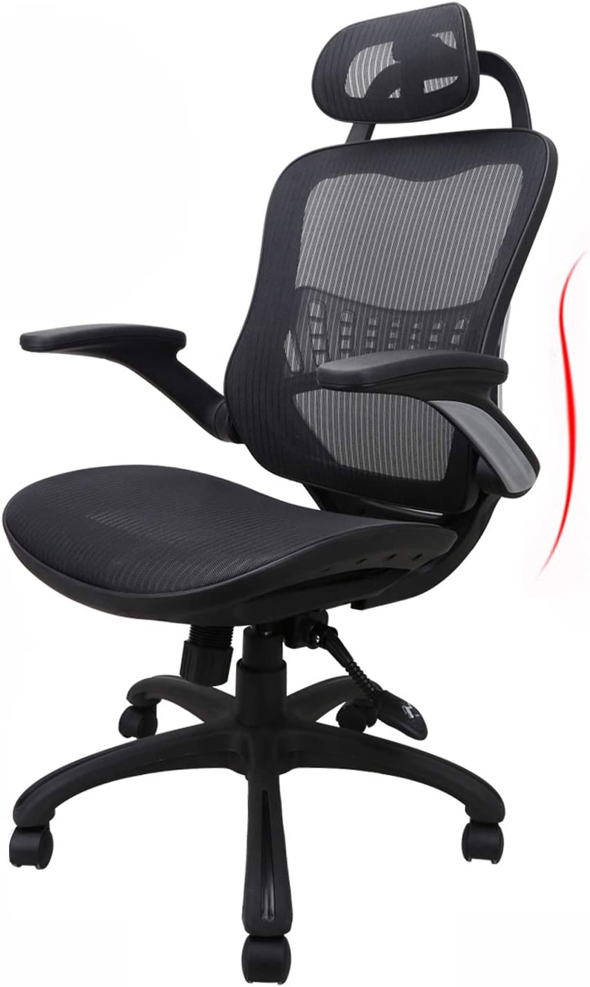 Ergousit Ergonomic Office Chair, Computer Desk Chair with High Back Support, Desk Chair with Flip-up Arms and Adjustable headrest, Adjustable Height Task Chair(Black)