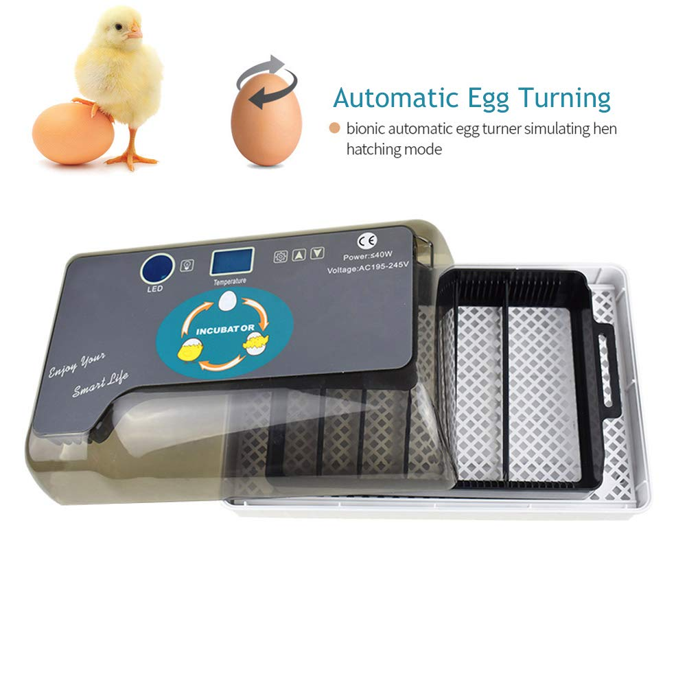 Upgraded Egg Incubator Automatic Incubator YZmoffer Digital Fully Automatic 12 Eggs Incubator for Chicken Eggs, Poultry Hatcher for Chickens Ducks Goose Birds (Black-12eggs)