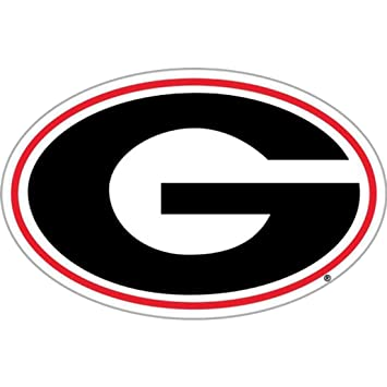 Image result for georgia g