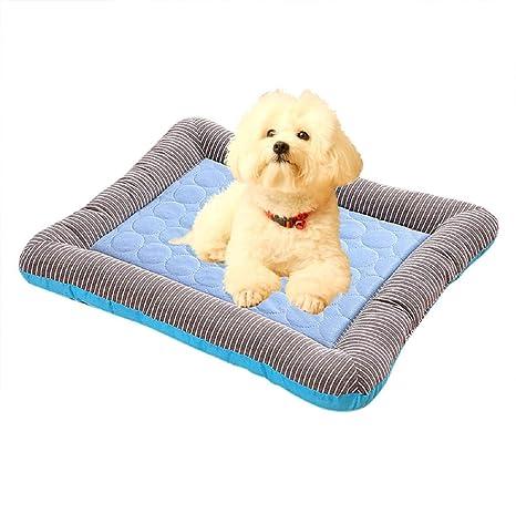 Amazon Com Boddenly Pet Dog Cooling Mat Dog Cooling Mat