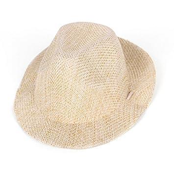 Moliies Joyas para Mascotas Sombrero de Vaquero Guapo Sombrero mágico Sombrero de Bruja de Gege Sombrero de Perro Divertido de Halloween: Amazon.es: ...