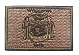 us army sewing kit - Wisconsin State FLAG TACTICAL US ARMY USA MILITARY MORALE VELCRO PATCH (1)