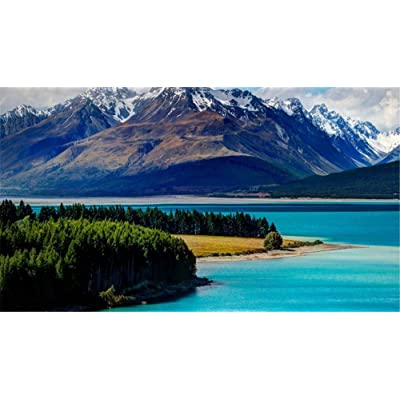 Jigsaw Puzzle 1000 Piece Tekapo Lake New Zealand Landscape Classic Puzzle DIY Kit Wooden Toy Unique Gift Home Decor: Toys & Games [5Bkhe1401175]