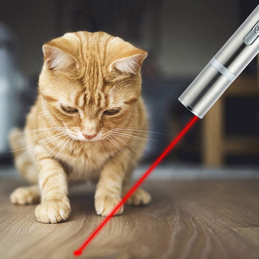Keepart Juguete Interactivo para Gatos con Puntero de luz LED y Cargador USB, Herramienta de Entrenamiento para Mascotas: Amazon.es: Productos para mascotas