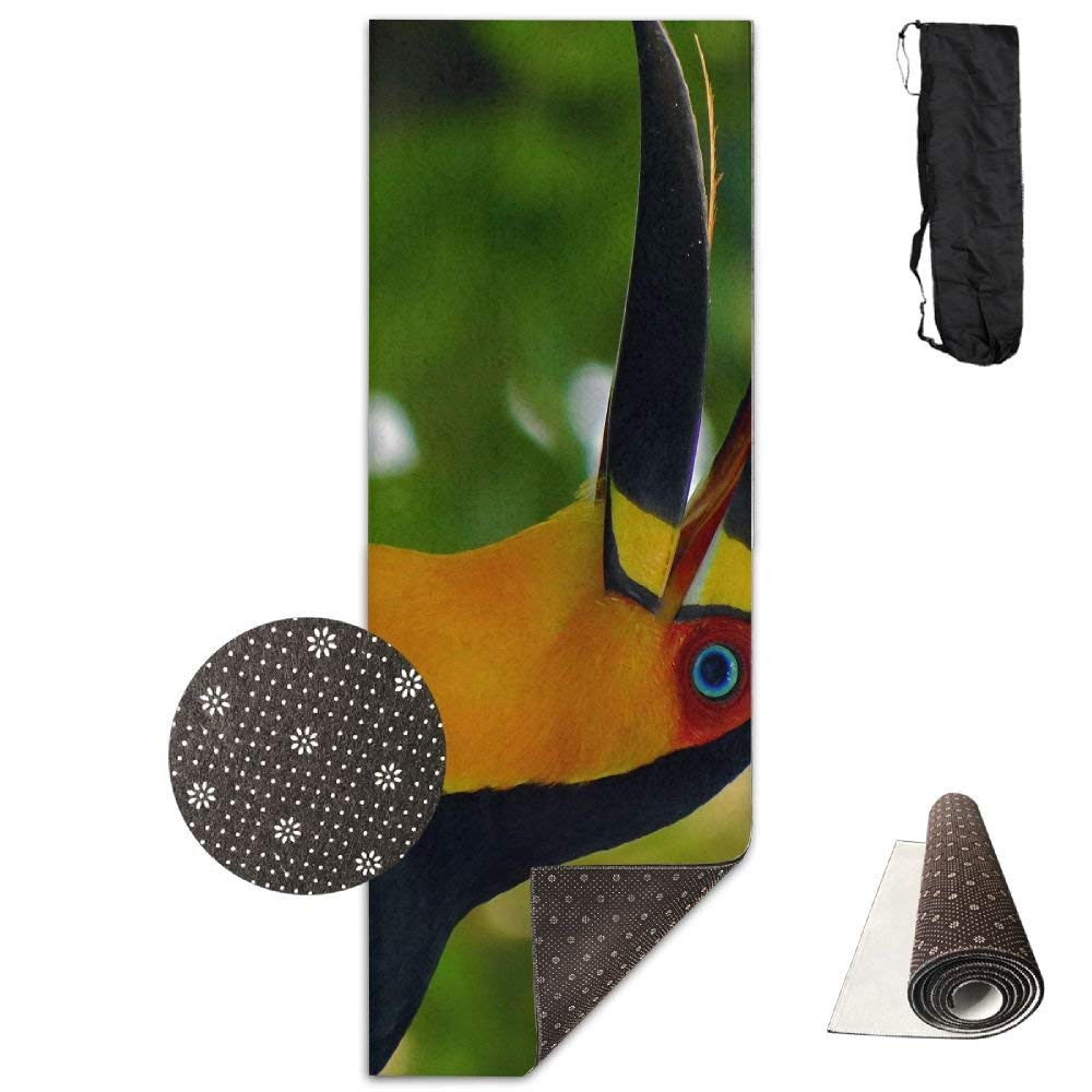 Singing Toucan Yoga Mat  Advanced Yoga Mat  NonSlip Lining  Easy to Clean  LatexFree  Lightweight and Durable  Long 180 Width 61cm