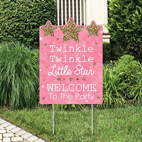 Big Dot of Happiness Pink Twinkle Twinkle Little