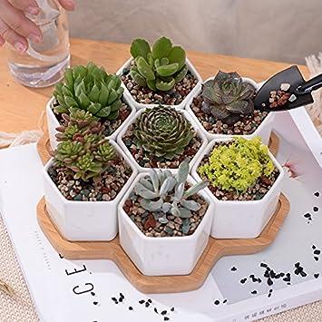 8/Set dekorative Geometrie weiß Keramik Blumentopf Sukkulente ...