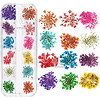 ICYCHEER 3D Design Real Dried Flowers Nail Art Decoration 12 Style Flowers Nail Art DIY Tools For Nail Beauty Accessories (A)