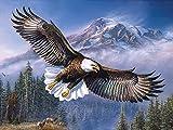 Farsla Flying eagle 5D Diy Round Diamond Painting by Number Kit Mosaics Rhinestone Hawk Painting for Wall Decor 12X16inch