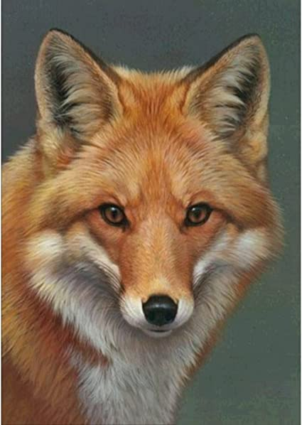 5D DIY Full Drill Diamond Painting Fox Cross Stitch Embroidery Mosaic Home Kit