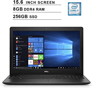 2020 Dell Premium Inspiron 15 3583 15.6 Inch FHD Laptop (Intel Core i7-8565U up to 4.6 GHz, 8GB RAM, 256GB SSD, Intel UHD Graphics 620, WiFi, Bluetooth, HDMI, Windows 10 Home)