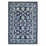 Cheap Karastan Pacifica Voltaire Woven Rug, 9'6×12'11, Indigo