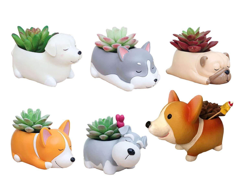 6 PCS Set Cute Cartoon Animal Corgi Husky Labrador Pug Schnauzer Shaped Succulent Cactus Flower Pot Plant Pots Planter Container for Home Garden Office Desktop Decoration Plants Not Included