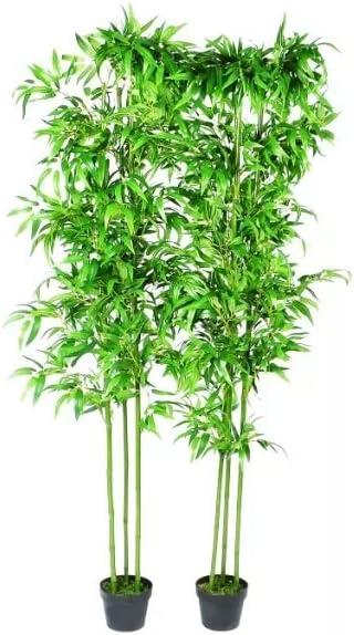 vidaXL 2X Plantas Artificiales Bambú con Cañas Reales 190 cm Maceta Plástico: Amazon.es: Jardín
