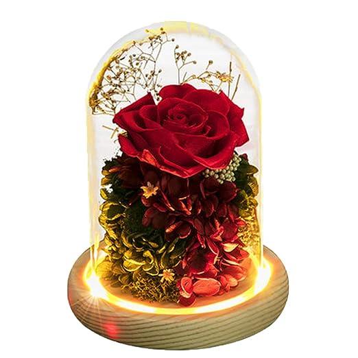 Bella CristalLámpara La Rosa Bestia de JHNEA Y La Rosa Rc3A45jLq