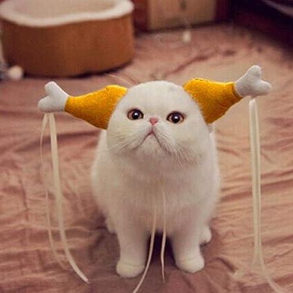 EMVANV Disfraz de Halloween para mascotas, gatos y perros ...