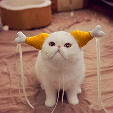 EMVANV Disfraz de Halloween para mascotas, gatos y perros, para gallinas y gallinas,