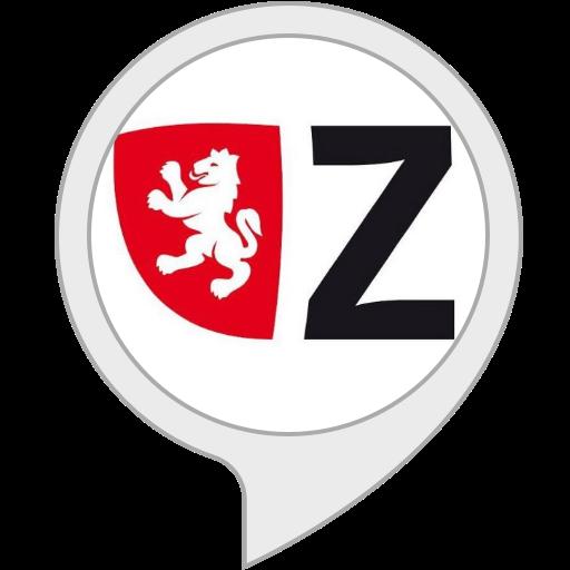 Zara Info: Amazon.es: Alexa Skills