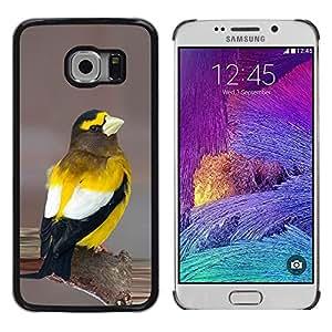 Be Good Phone Accessory // Dura Cáscara cubierta Protectora Caso Carcasa Funda de Protección para Samsung Galaxy S6 EDGE SM-G925 // yellow songbird beautiful nature feathers