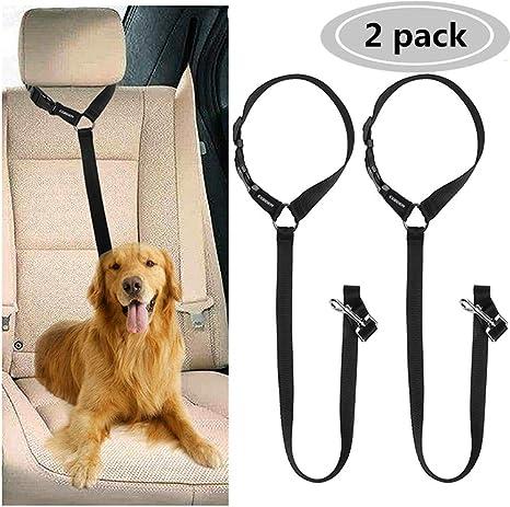Dog Seat Belt lead restraint harness