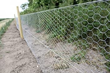 chicken wire garden fence. Chicken Wire 1.8m X 50m Hexagonal Galvanised Metal Fencing, Ideal For Coops, Small Garden Fence