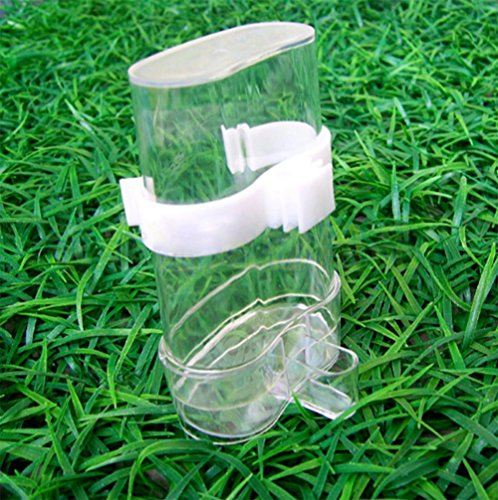 Bird Waterer Bird Feeders, Bird Feed Water Dispenser, Clear Pet Feeder and Water Cup By Cydnlive(Clasp Has Two Colors: Green and White,Random Delivery. ) (Package 2)