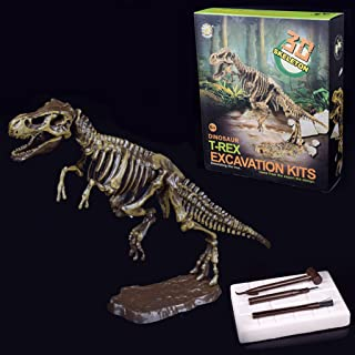 ZJL220 Scopri Dinosaur Kit Skeleton Bones Modello Scavo Archeologia Giocattolo Regalo per Bambini 1