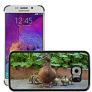 Hot Style Cell Phone PC Hard Case Cover // M00113840 Duck Duck Family Chicks Duck Mother // Samsung Galaxy S6 EDGE (Not Fits S6)