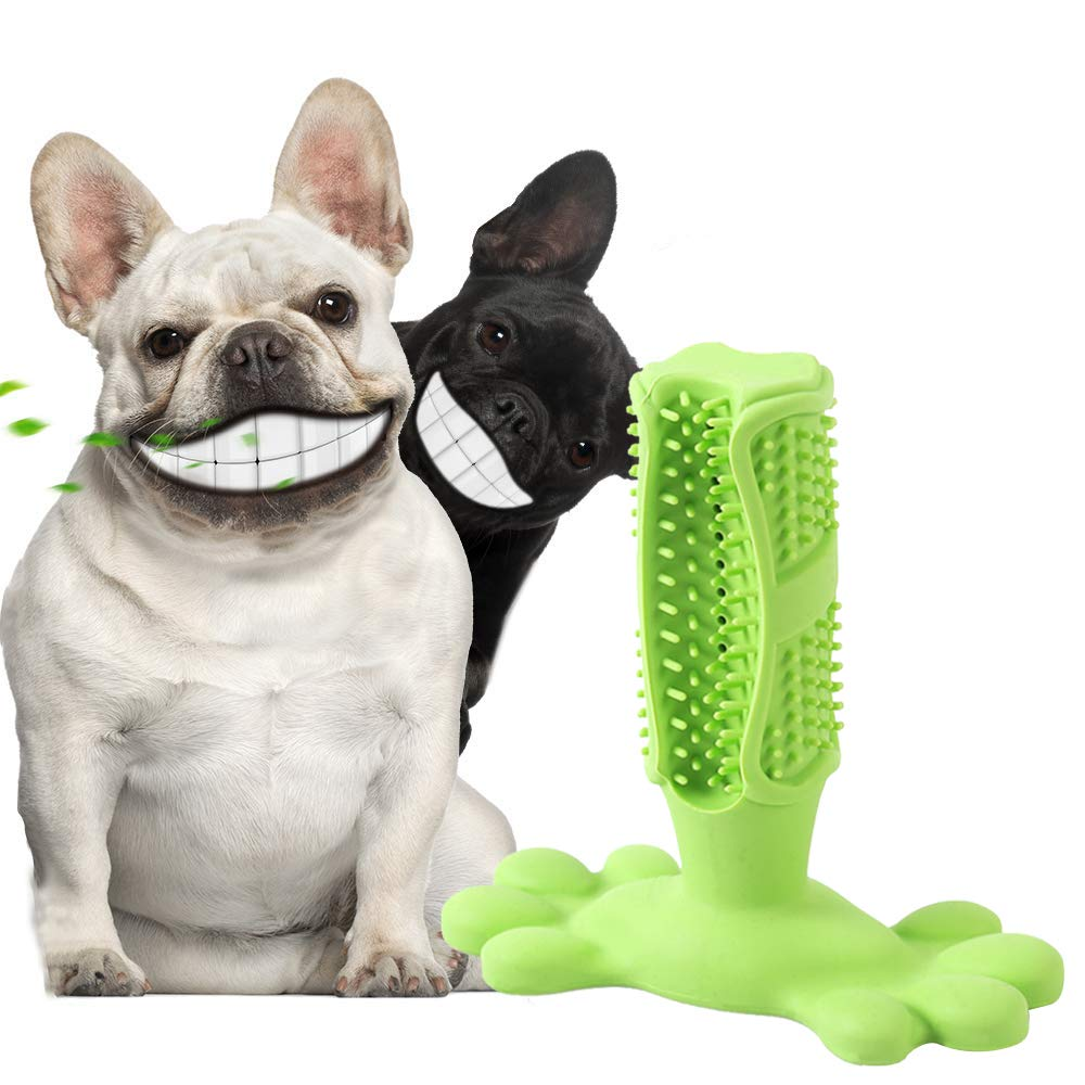 REGO Dog Toothbrush - Dog Dental Chew Toy Brush Pet Toothbrush Cleaning Cleaning Stick Toys, Safe & Durable Brushes for Pet (Medium) by REGO