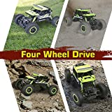 RC Car, NQD Remote Control Monster Truck, 2.4Ghz