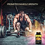 BCAA-Capsules-Daily-Muscle-Support-Formula-Amino-Acids-Help-Reduce-Fat-Levels-and-Aid-to-Maximize-Endurance-Best-Dietary-Supplement-for-Muscle-Recovery-Money-Back-Guarantee