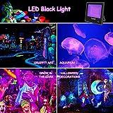 UV LED Black Light, 100W UV LED Floodlight